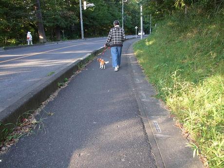 2014-09-26-8.jpg